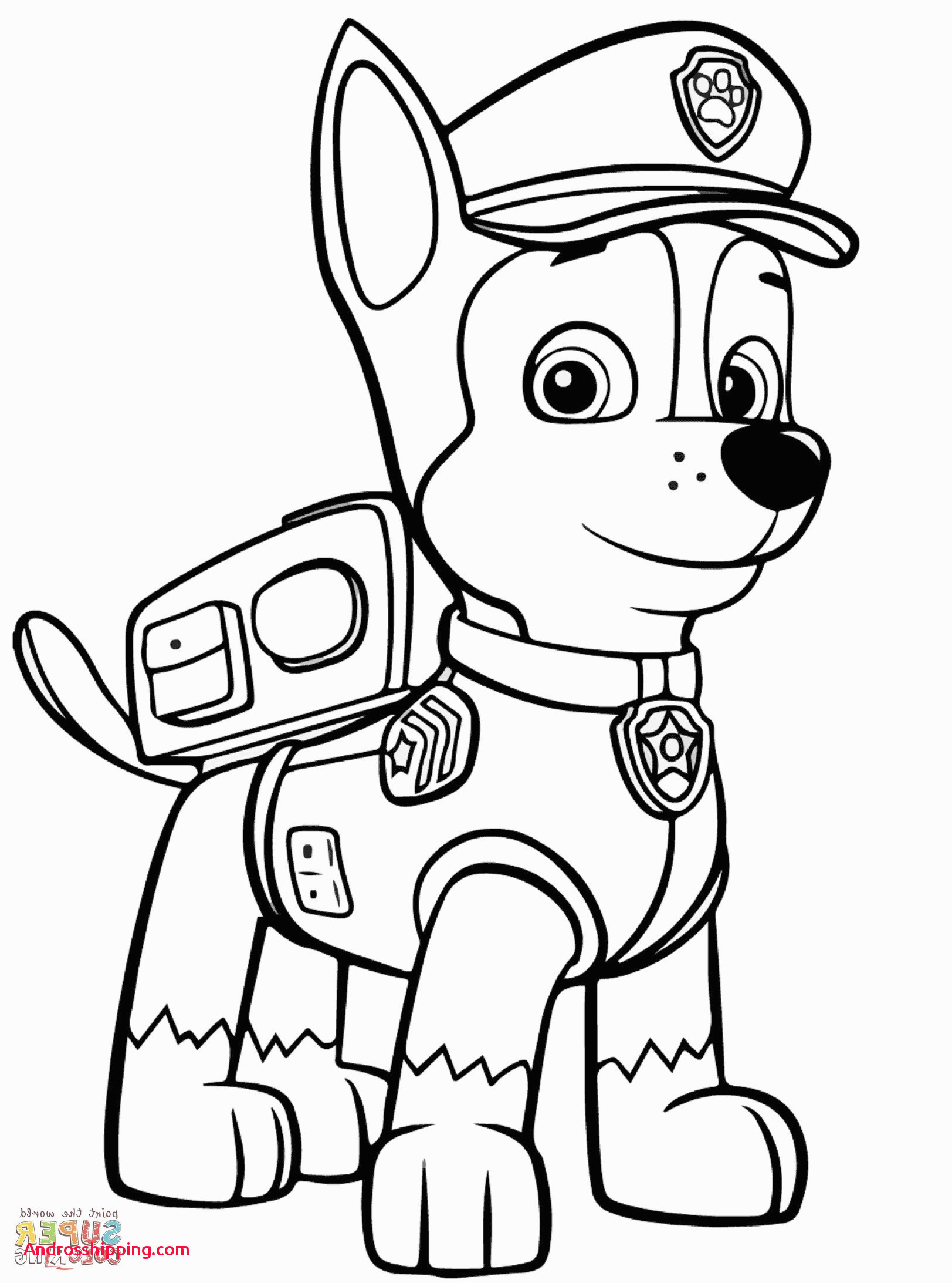 Paw Patrol Ausmalbilder Sky Genial 10 Awesome Coloring Pages Zuma From Paw Patrol androsshipping Genial Bilder
