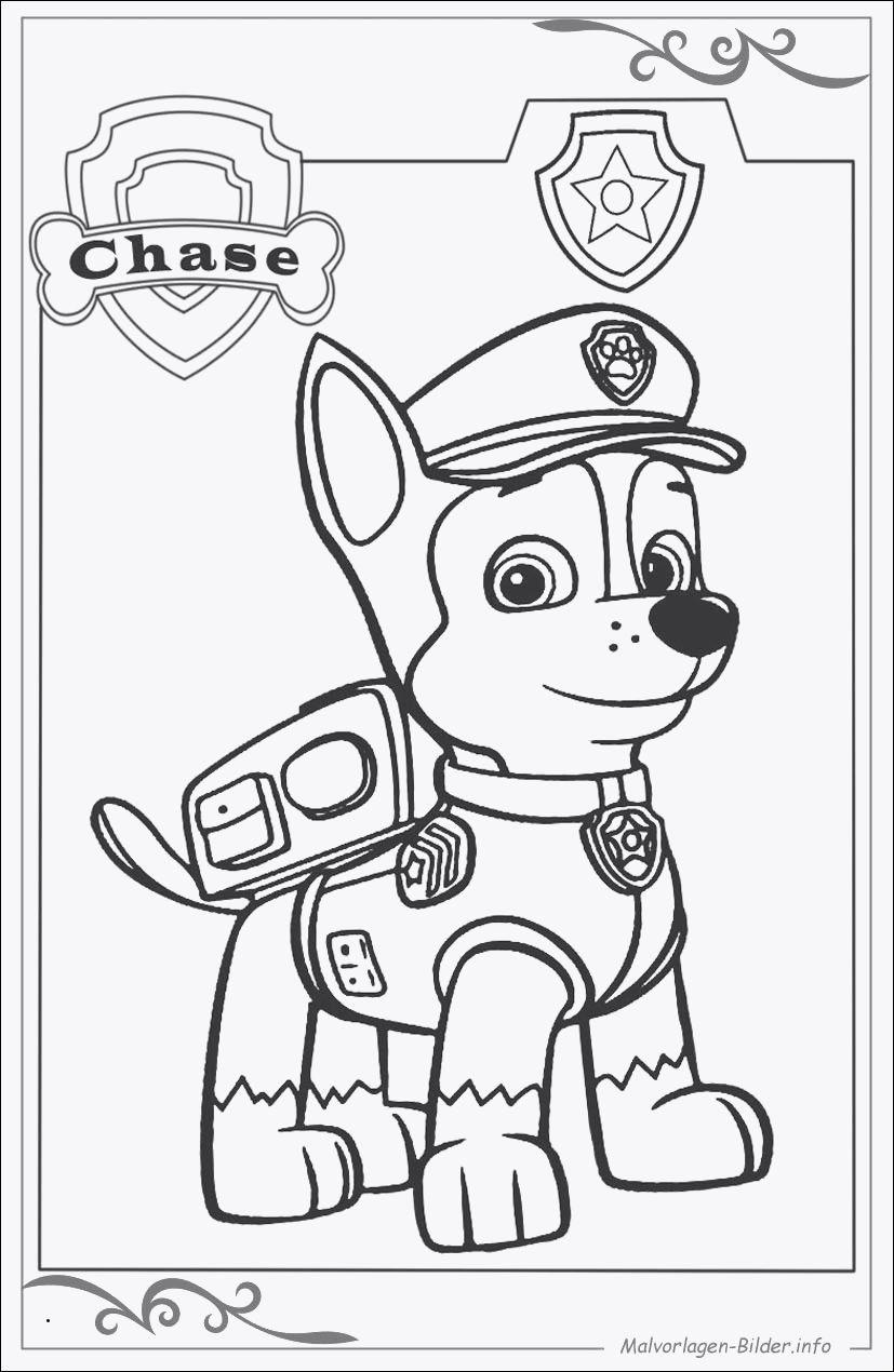 Paw Patrol Ausmalbilder Tracker Einzigartig Ausmalbilder Zum Ausdrucken Paw Patrol Inspirierend Paw Patrol Stock