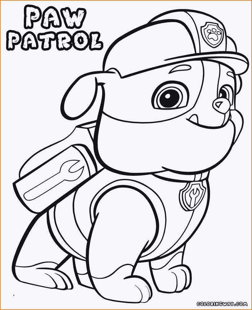 Paw Patrol Ausmalbilder Tracker Genial Paw Patrol Rocky Ausmalbilder Uploadertalk Best Paw Patrol Das Bild