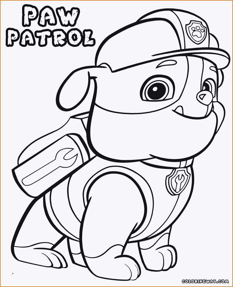 Paw Patrol Rocky Ausmalbilder Frisch 36 Skizze Paw Patrol Ausmalbilder Chase Treehouse Nyc Fotos