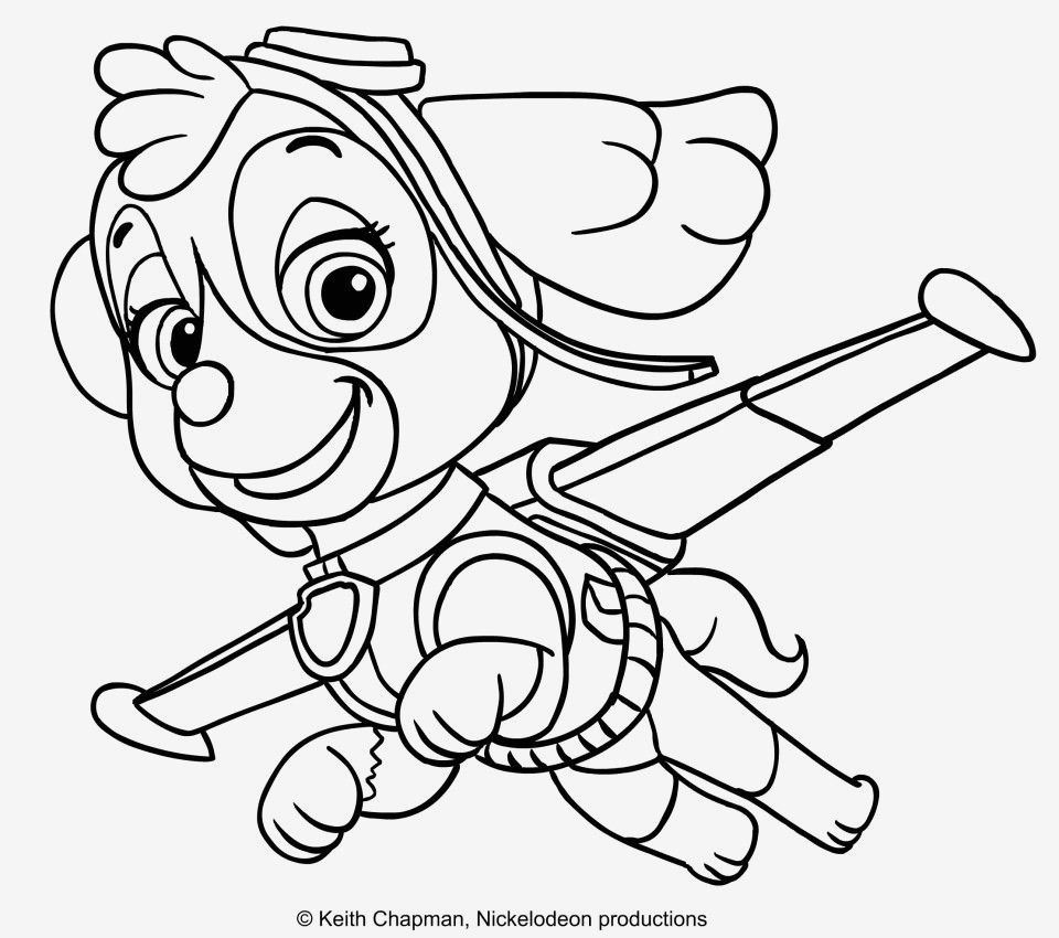Paw Patrol Rocky Ausmalbilder Frisch Inspirational Marshall Paw Patrol Coloring Page Coloring Pages Schön Fotografieren