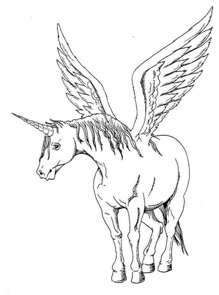 Pegasus Zum Ausmalen Das Beste Von Janbleil Konabeun Zum Ausdrucken Ausmalbilder Pegasus Bild