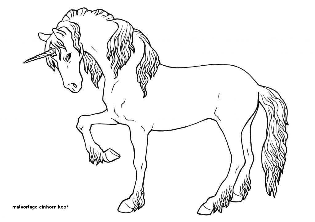 Pegasus Zum Ausmalen Einzigartig 26 Malvorlage Einhorn Kopf Colorprint Bilder