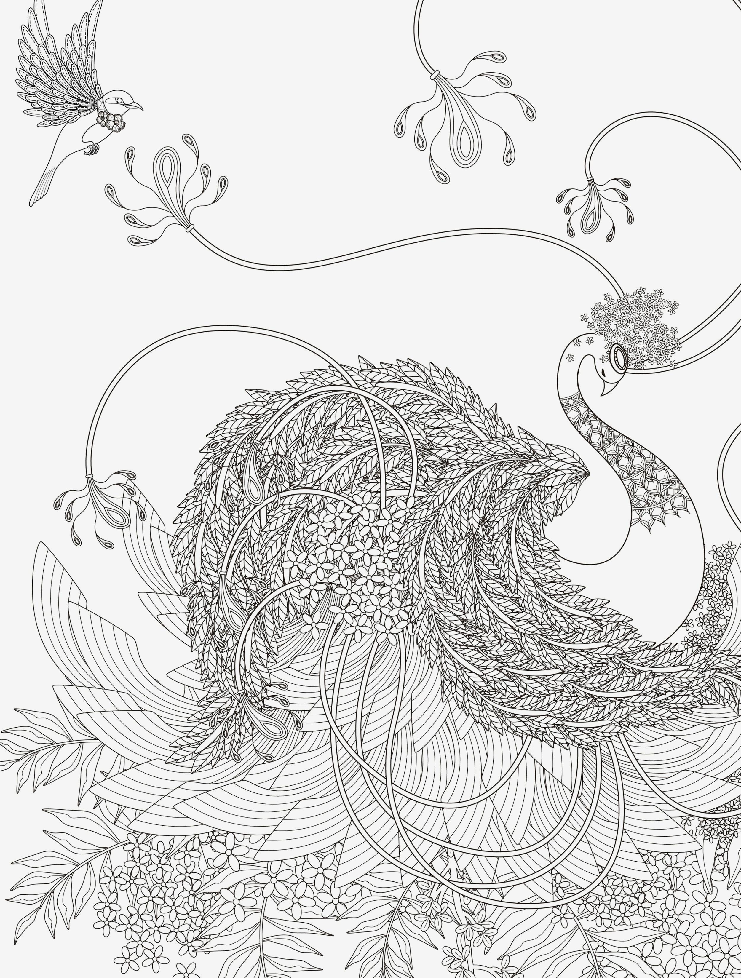 Pegasus Zum Ausmalen Genial Beispielbilder Färben Ausmalvorlagen Galerie