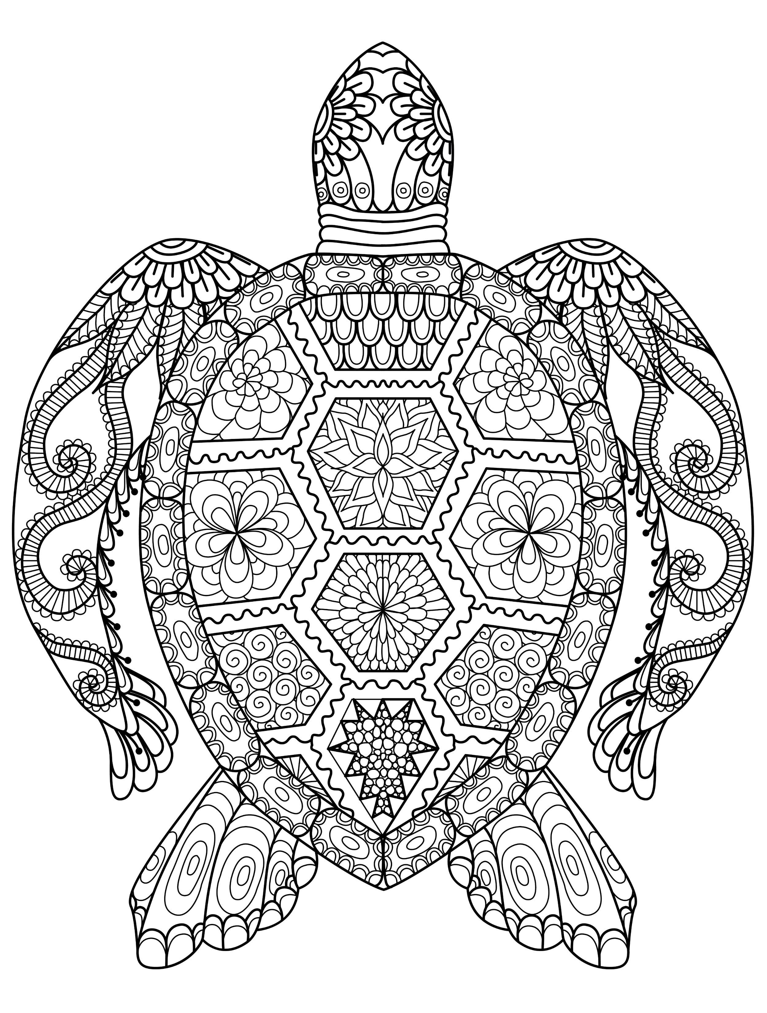 Peppa Wutz Malvorlage Einzigartig Ausmalbilder Für Erwachsene Seeschildkröte Ausmalbilder Von Bild