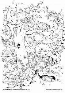 Peppa Wutz Malvorlage Genial Disegno Peppa Pig Impressionante Malvorlagen Igel Best Igel Galerie