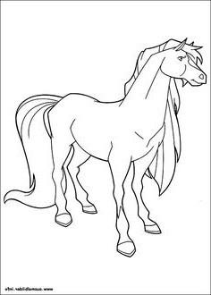 Pferde Ausmalbilder Horseland Einzigartig 26 Fantastisch Horseland Ausmalbilder – Malvorlagen Ideen Stock
