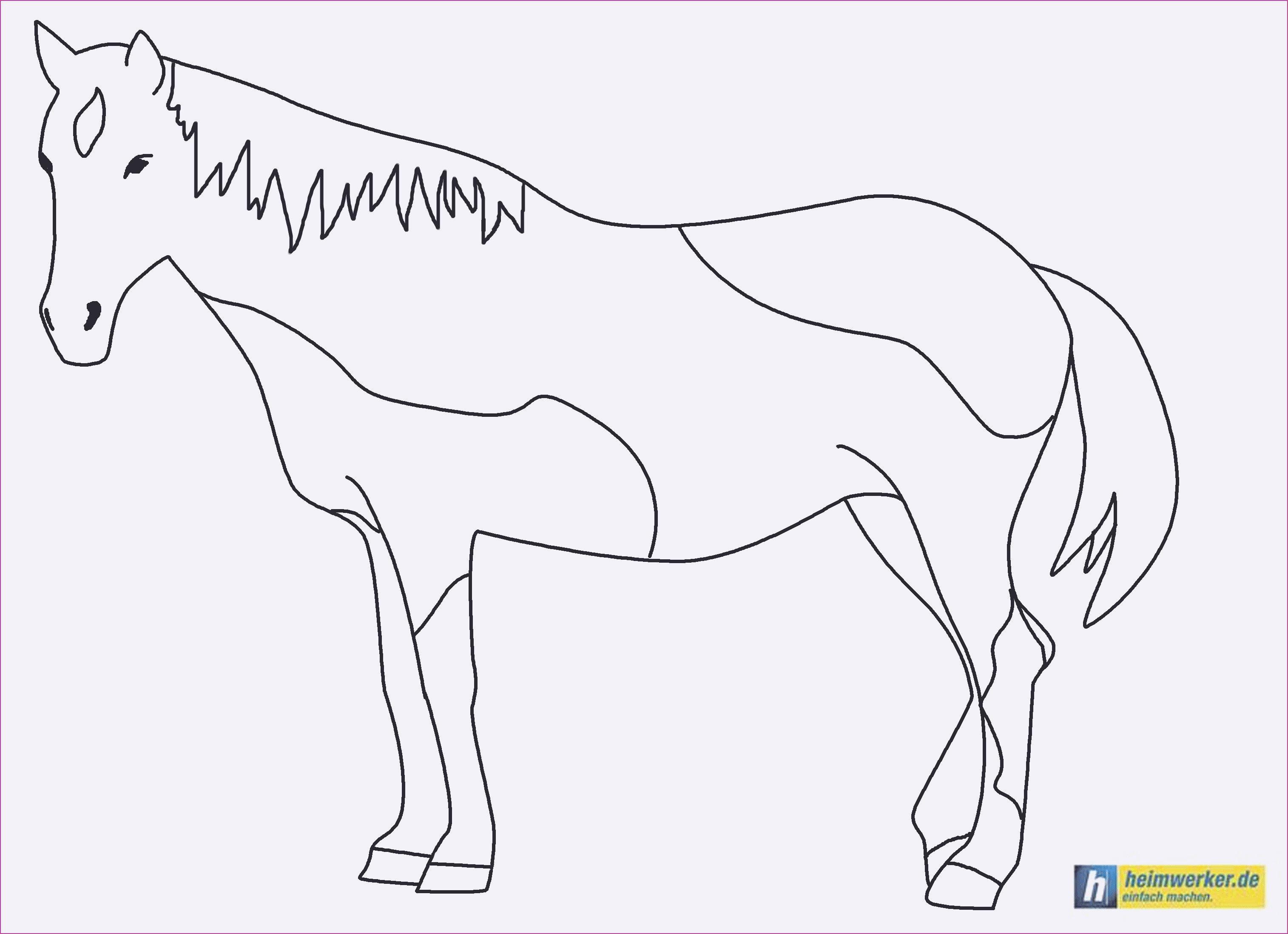 Pferde Ausmalbilder Horseland Einzigartig Malvorlagen Schleich Pferde Stock