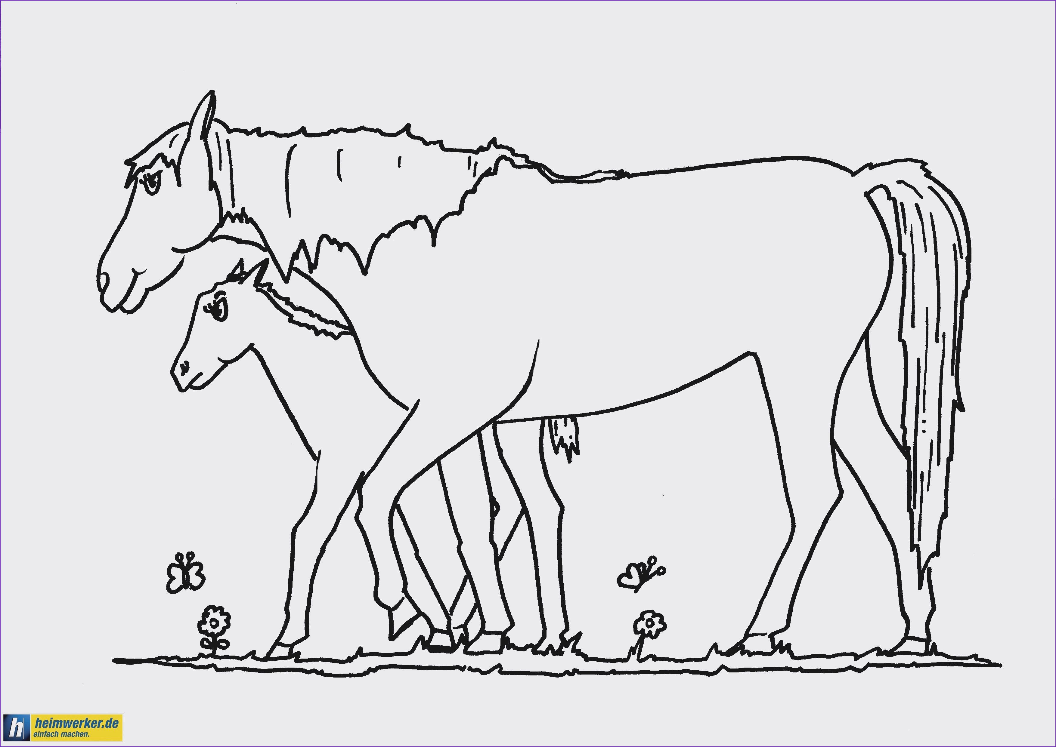Pferde Ausmalbilder Horseland Genial Lernspiele Färbung Bilder Ausmalbilder Hund Kostenlos Drucken Bilder