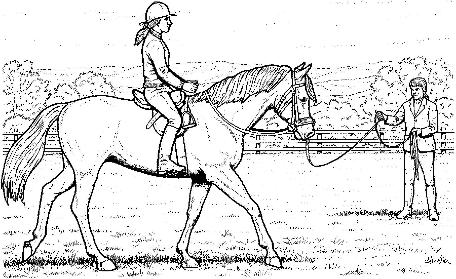 Pferde Ausmalbilder Horseland Neu Ausmalbilder Horseland Schön Ausmalbilder Eine Sammlung Von Färbung Das Bild