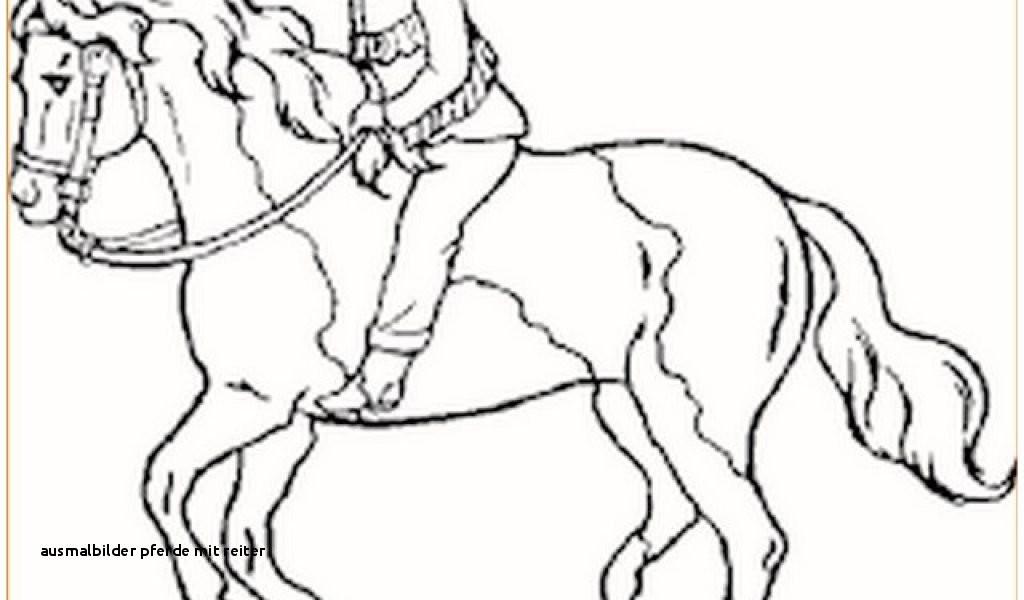 Pferde Ausmalbilder Mit Reiter Genial 25 Ausmalbilder Pferde Mit Reiter Colorbooks Colorbooks Fotos