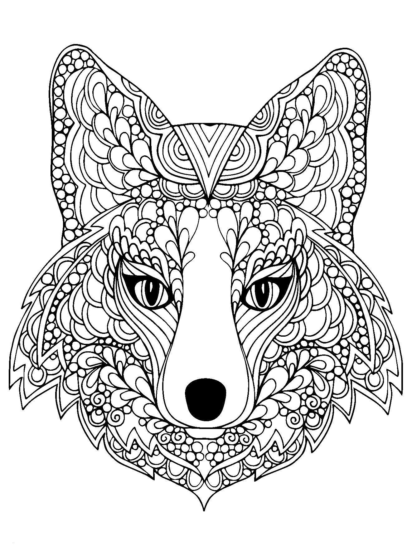 Pferde Ausmalbilder Mit Reiter Genial Ausmalbilder Reiter Schön Coloring Page Beutiful Fox Head Free to Galerie