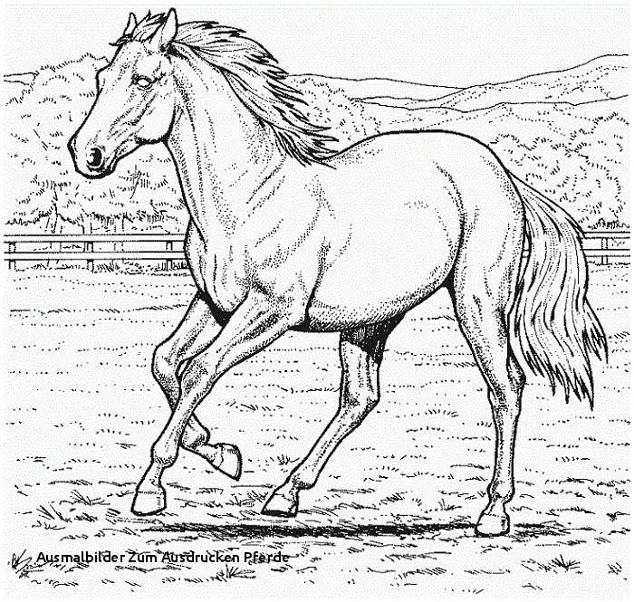 Pferde Ausmalbilder Zum Drucken Das Beste Von Ausmalbilder Zum Ausdrucken Pferde Ausmalbilder Pferde Mandala Ideen Sammlung