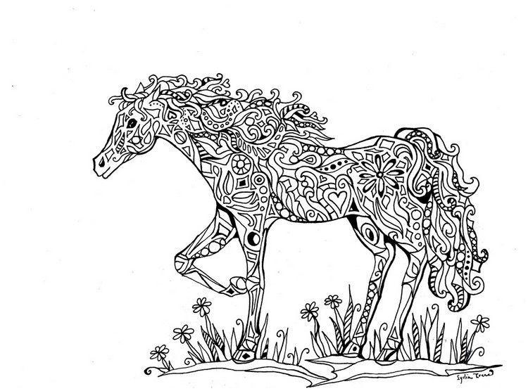 Pferde Ausmalbilder Zum Drucken Das Beste Von Pferde Ausmalbilder Ausmalbilder Erwachsene Ausdrucken Tiere Pferd Fotografieren