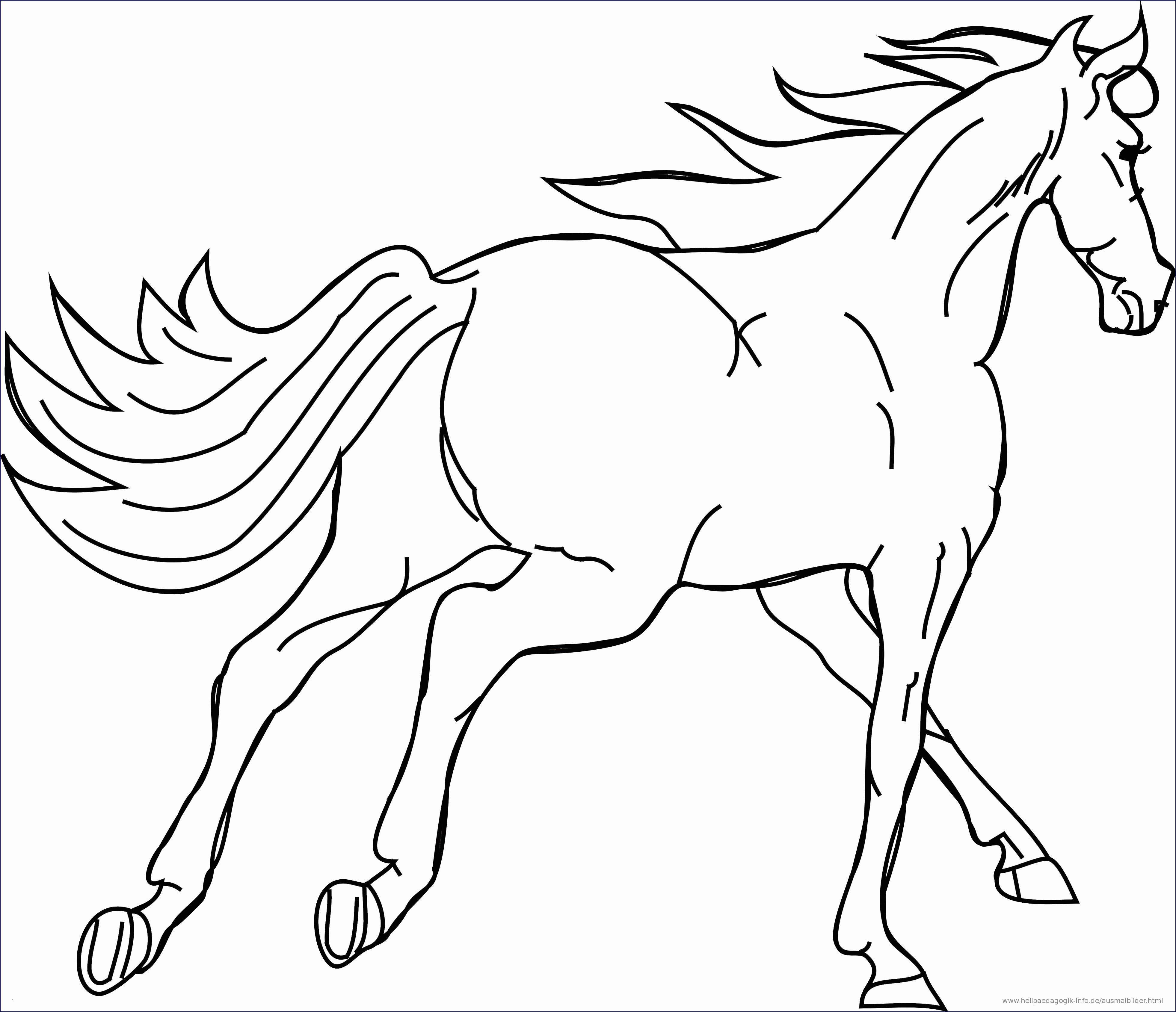 Pferde Ausmalbilder Zum Drucken Einzigartig 38 Ausmalbilder Pferde Mit Fohlen Scoredatscore Luxus Pferde Galerie