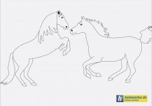 Pferde Ausmalbilder Zum Drucken Einzigartig Malvorlagen Pferde Neu Ausmalbilder Galerie
