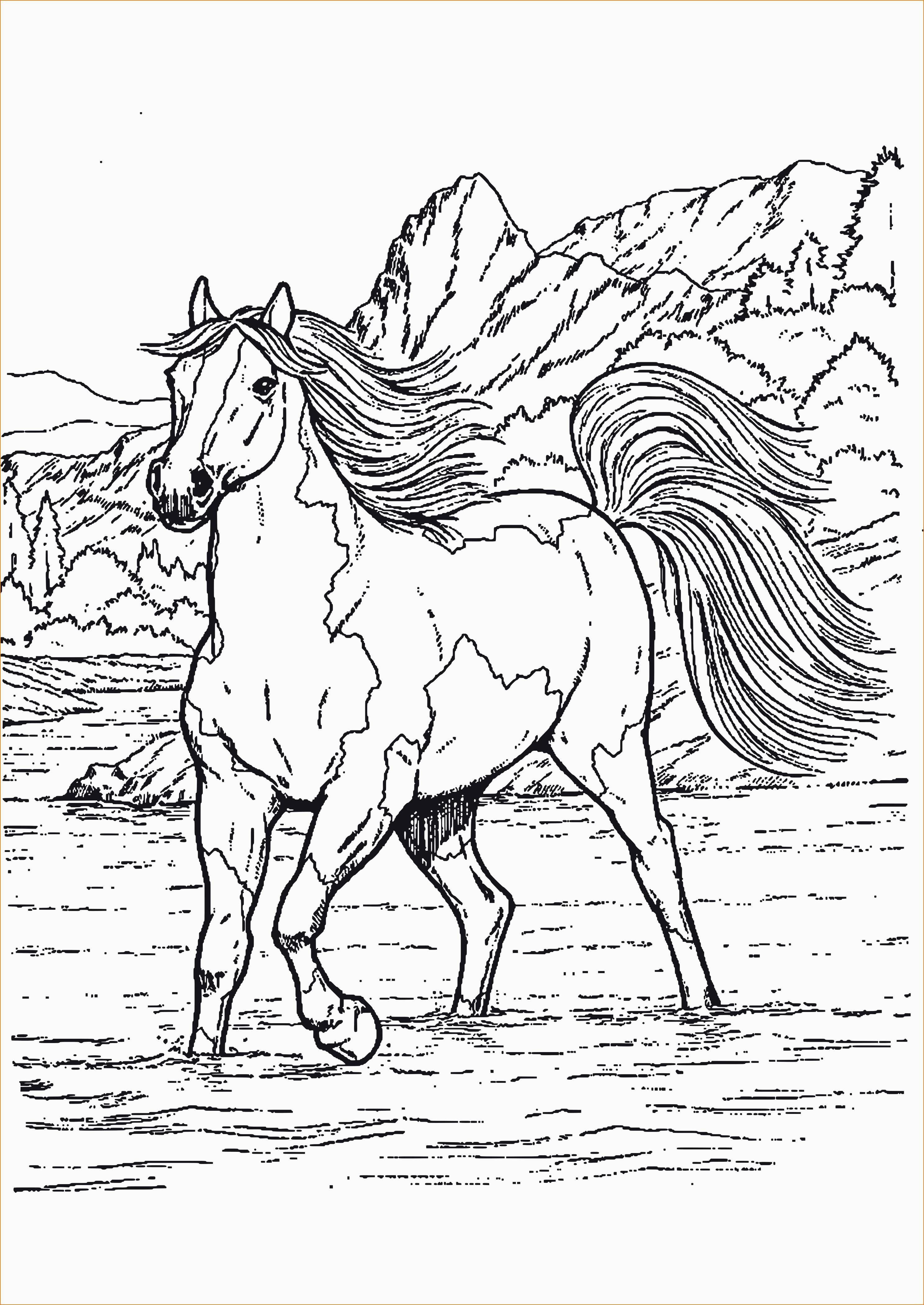 Pferde Ausmalbilder Zum Drucken Einzigartig Pferde Ausmalbilder Zum Ausdrucken Kostenlos Kollektionen Von Stock
