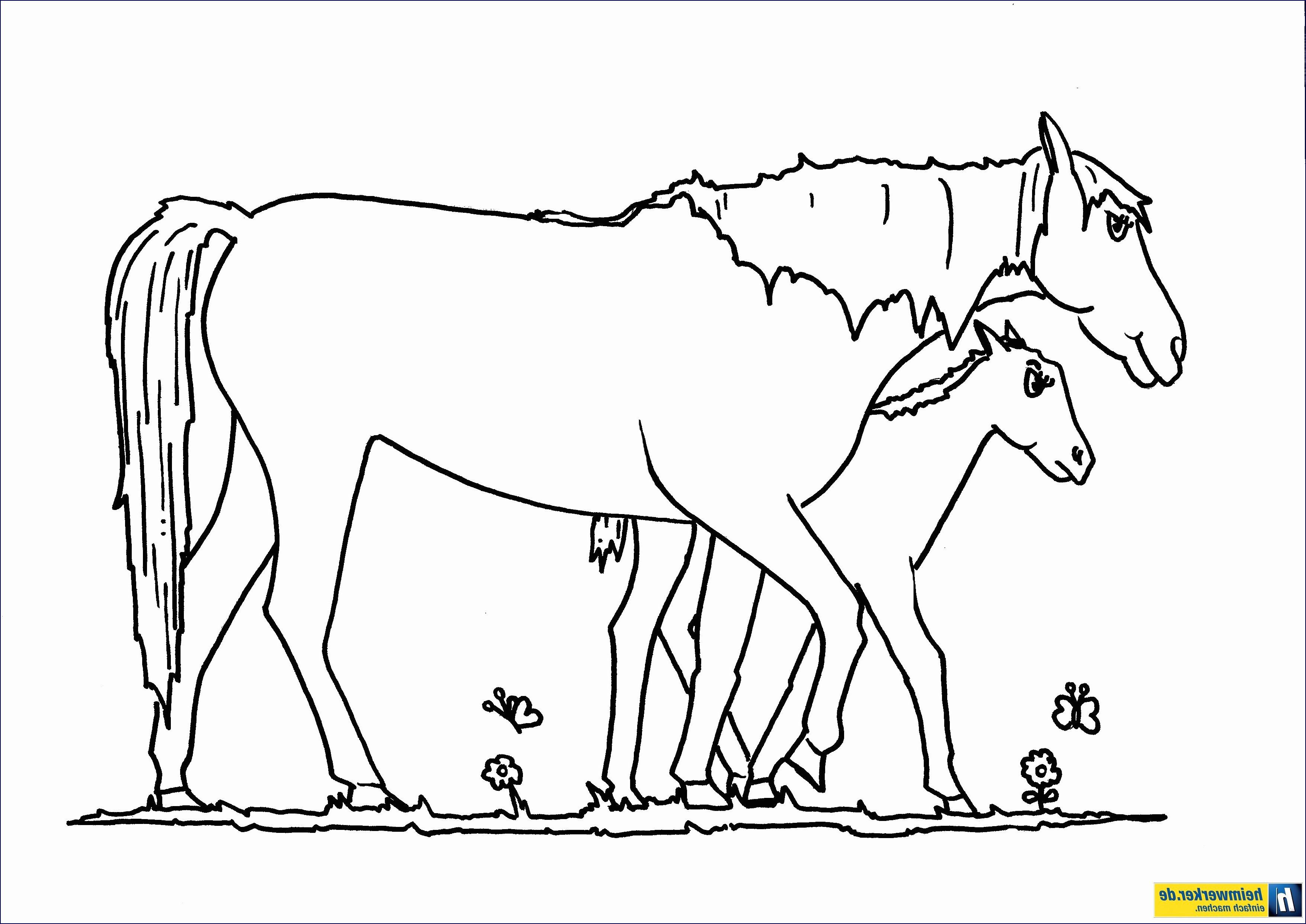 Pferde Ausmalbilder Zum Drucken Frisch 30 Einzigartig Pferde Mandalas – Malvorlagen Ideen Galerie
