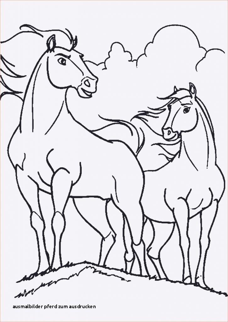 Pferde Ausmalbilder Zum Drucken Frisch Ausmalbilder Pferd Zum Ausdrucken Malvorlage A Book Coloring Pages Fotos
