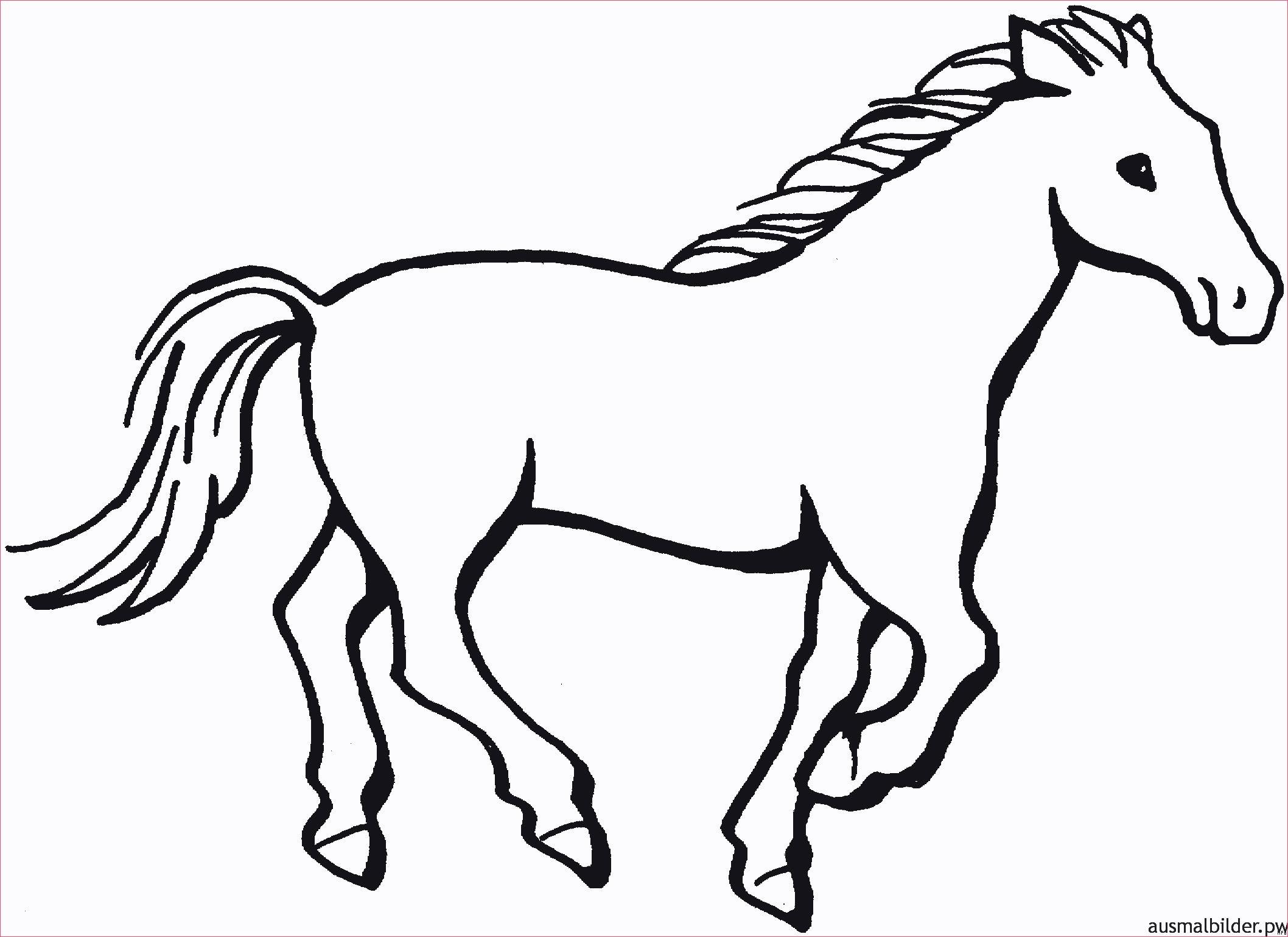 Pferde Ausmalbilder Zum Drucken Genial Pferde Bilder Zum Ausdrucken Unique 40 Pferde Ausmalbilder Zum Das Bild
