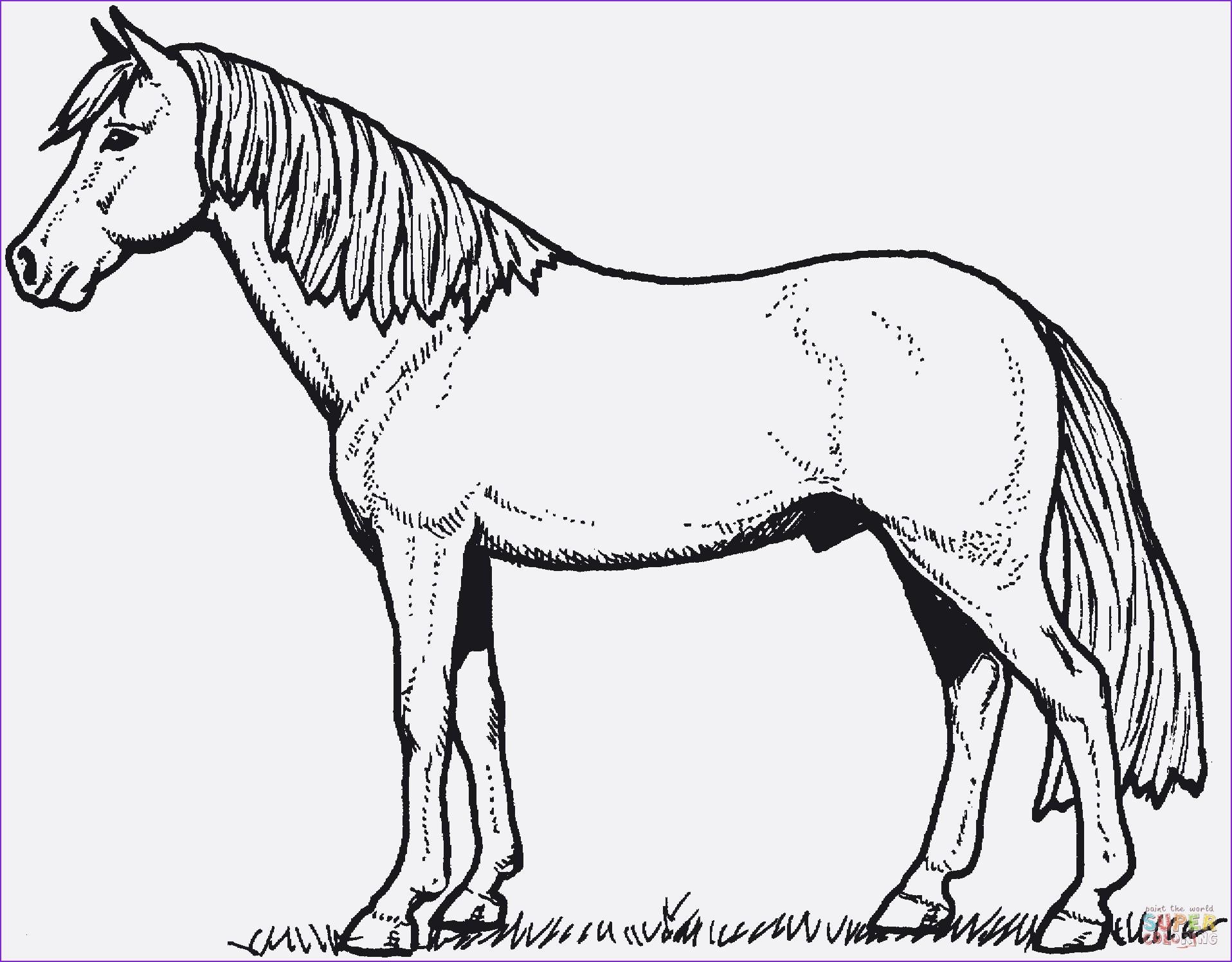 Pferde Ausmalbilder Zum Drucken Genial Pferdebilder Zum Ausdrucken Stück 38 Ausmalbilder Pferde Mit Fohlen Galerie