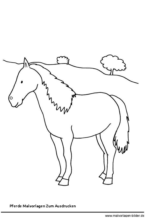 Pferde Ausmalbilder Zum Drucken Neu Pferde Malvorlagen Zum Ausdrucken Pferde Bild Zum Ausdrucken Und Bild