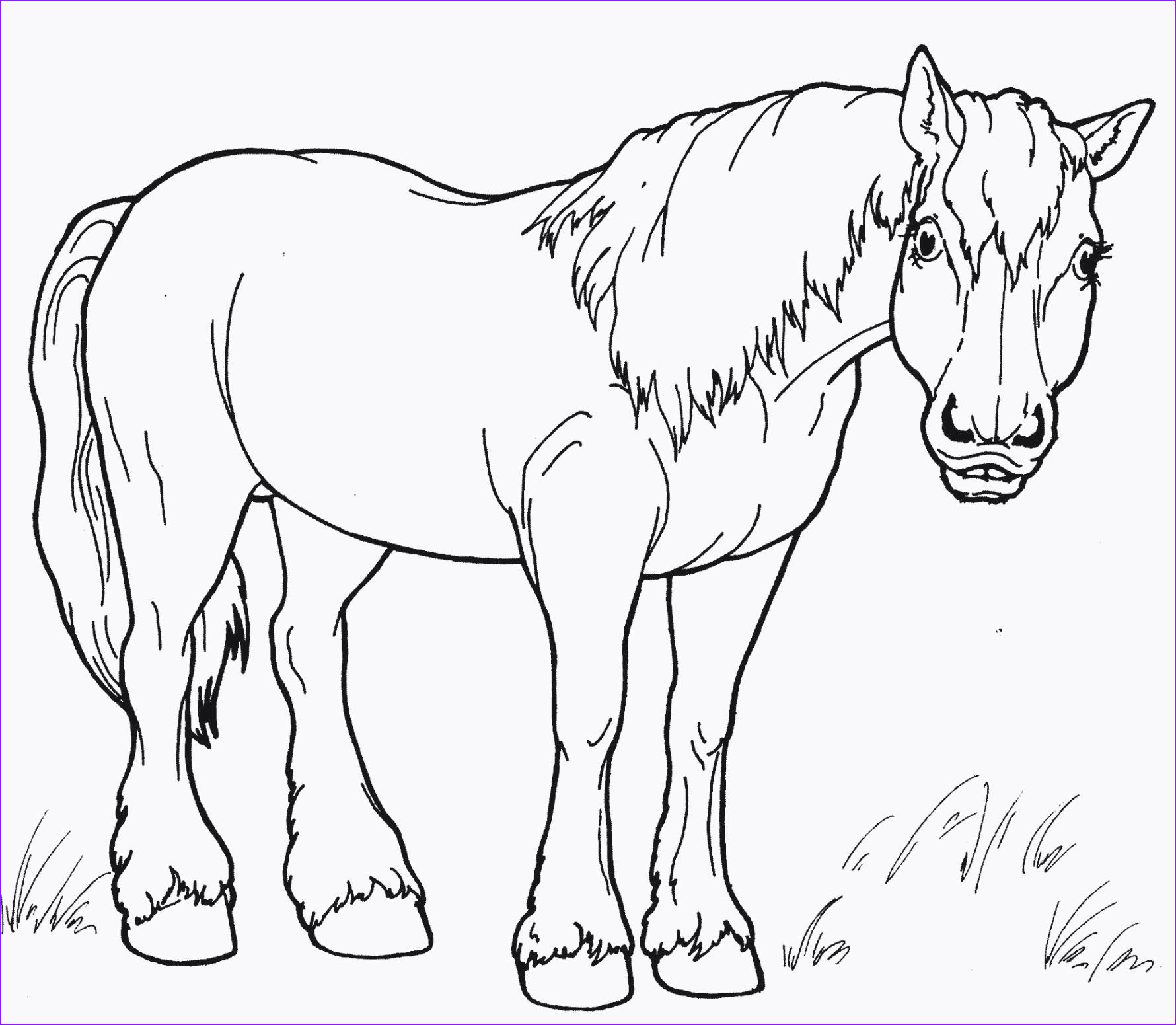Pferde Bilder Zum Ausdrucken Das Beste Von Ausmalbilder Pferde Zum Ausdrucken Neueste Modelle Mini Ausmalbilder Bilder