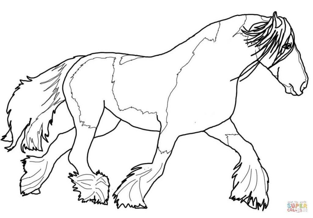Pferde Bilder Zum Ausdrucken Frisch Janbleil Ausmalbilder Tiere Pferd Pferde Gaul Ackergaul Ponny Stock