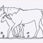 Pferde Bilder Zum Ausdrucken Genial Bayern Ausmalbilder Frisch Igel Grundschule 0d Archives Neu Pferde Das Bild