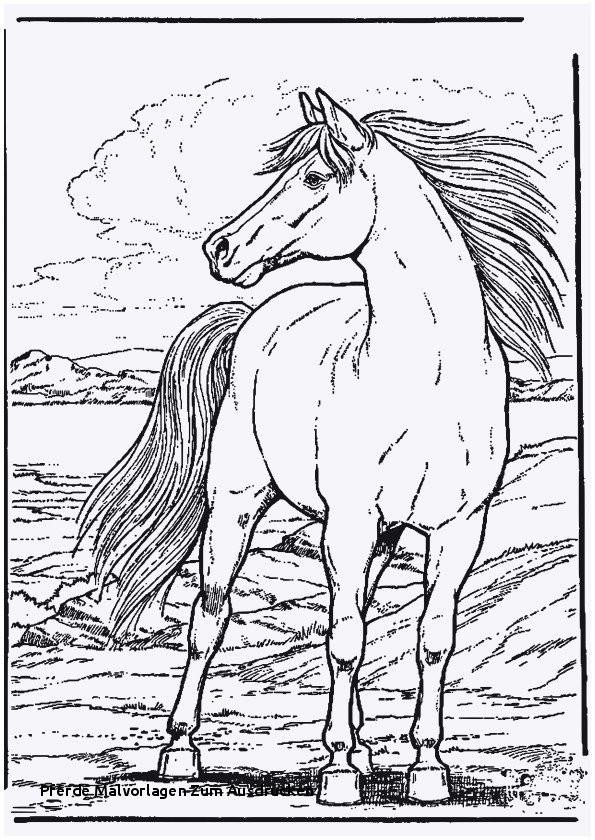 Pferde Bilder Zum Ausdrucken Neu Pferde Malvorlagen Zum Ausdrucken Pferde Ausmalbilder Unique 42 Das Bild
