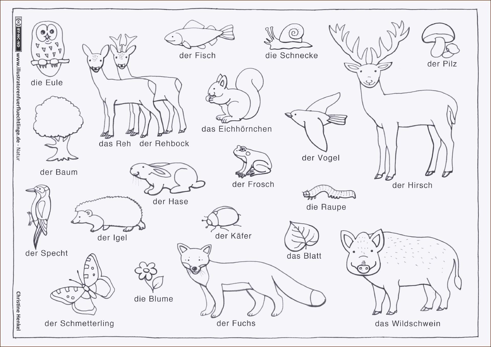 Pflanzen Gegen Zombies Ausmalbilder Neu Ausmalbilder Eichhörnchen Inspirierend Malvorlagen Herbst Sammlung