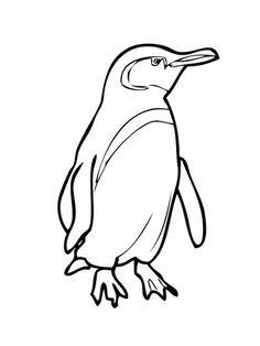 Pinguin Vorlage Zum Ausmalen Frisch Ausmalbilder Zum Ausdrucken Pinguin Pinterest Fotos