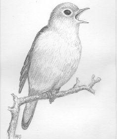 Pinterest Zeichnungen Bleistift Einzigartig 186 Besten M20 Kuli Bleistift Kunst Bilder Auf Pinterest In 2018 Das Bild