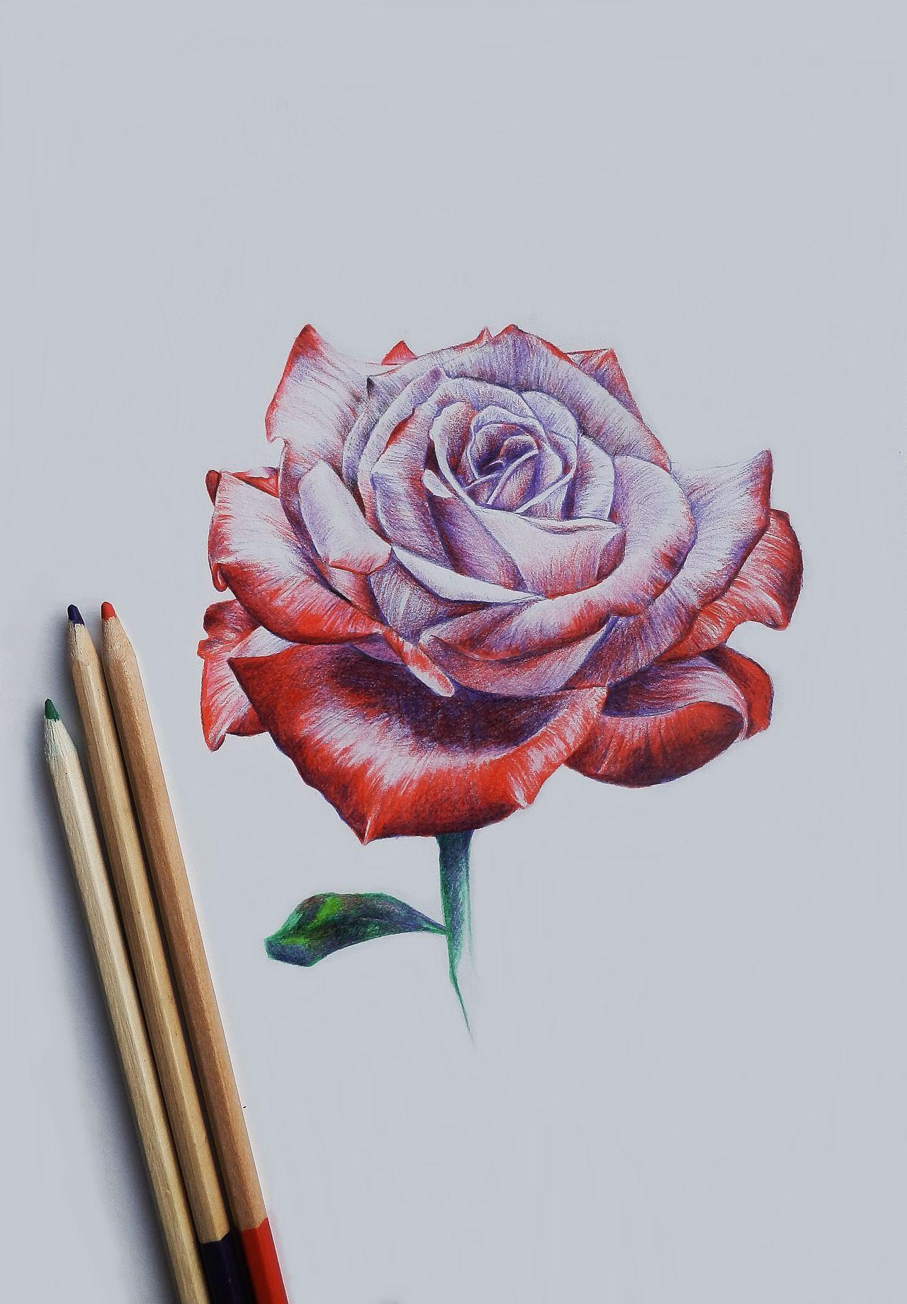 Pinterest Zeichnungen Bleistift Genial Pinterest Nuggwifee☽ ☼☾ Drawing Pinterest Sammlung