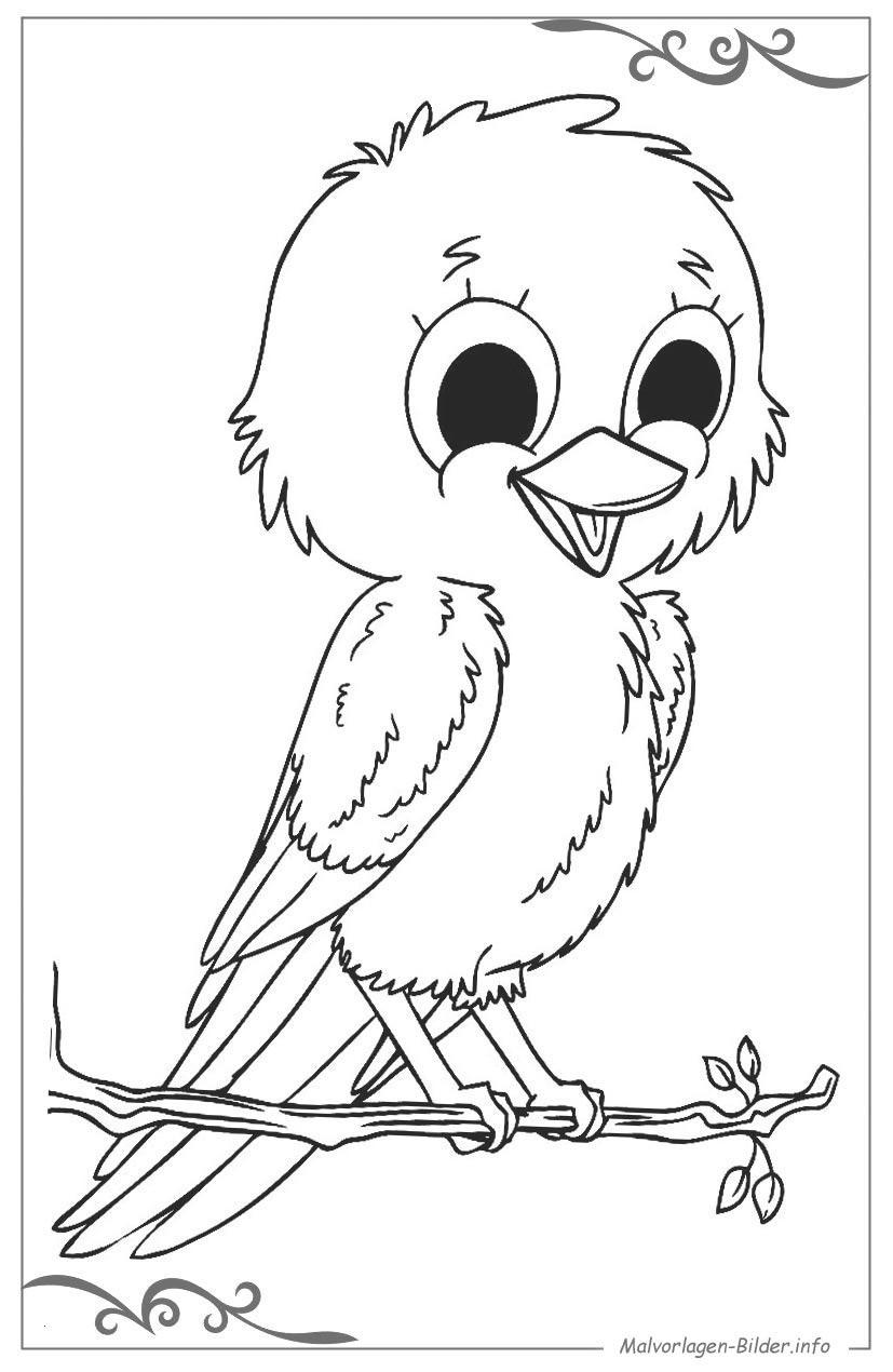 Pippi Langstrumpf Ausmalbilder Neu Malvorlagen Für Den Kindergarten Schön 10 Vogel Ausmalbilder Zum Galerie