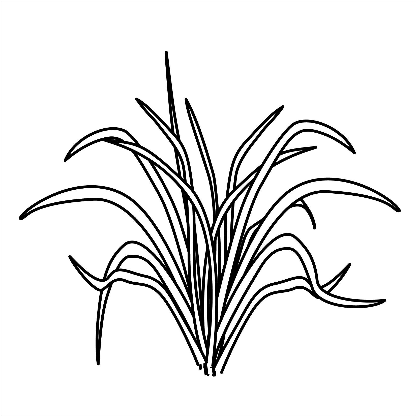 Plants Vs Zombies Ausmalbilder Neu Pflanzen Gegen Zombies Ausmalbilder Foto Printable Coloring Pages Bild