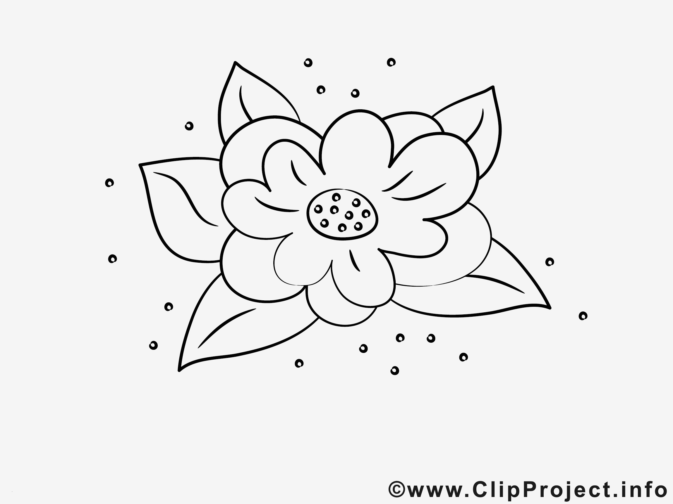 Pokemon Ausmalbilder sonne Und Mond Genial Spannende Coloring Bilder Ausmalbilder Blumen Kostenlos Neu Gratis Sammlung
