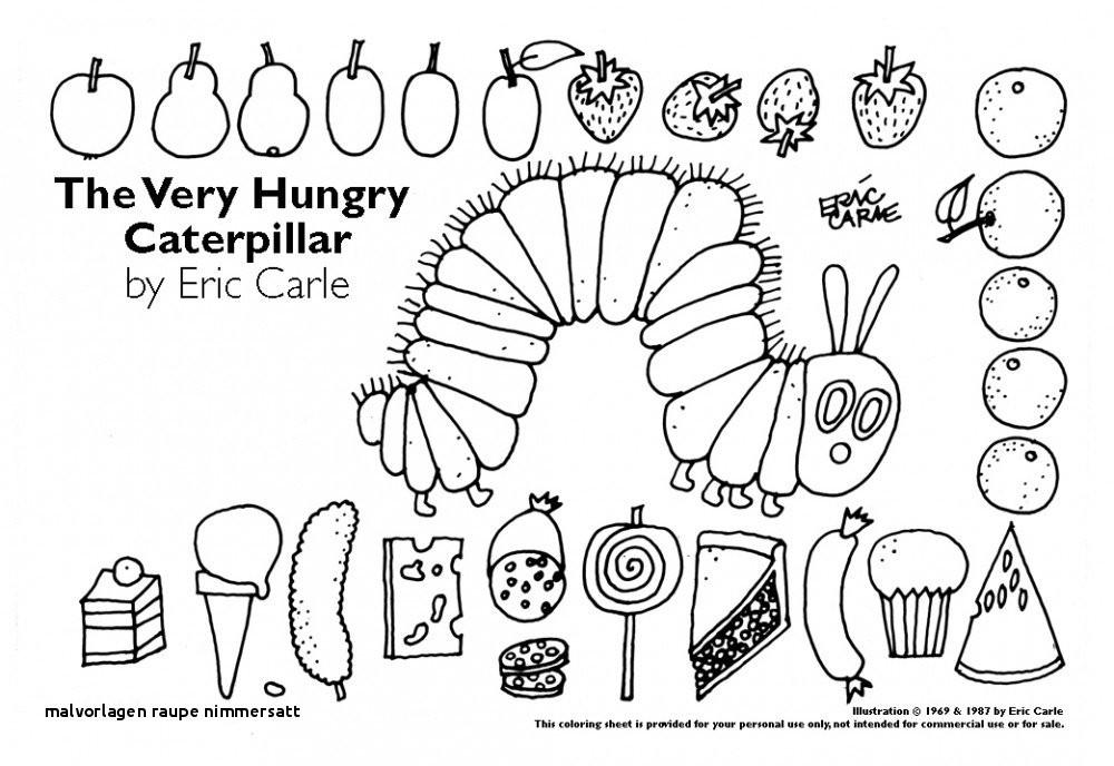Raupe Nimmersatt Ausmalbild Genial Malvorlagen Raupe Nimmersatt Malvorlagen Für Kleine Kinder Bilder
