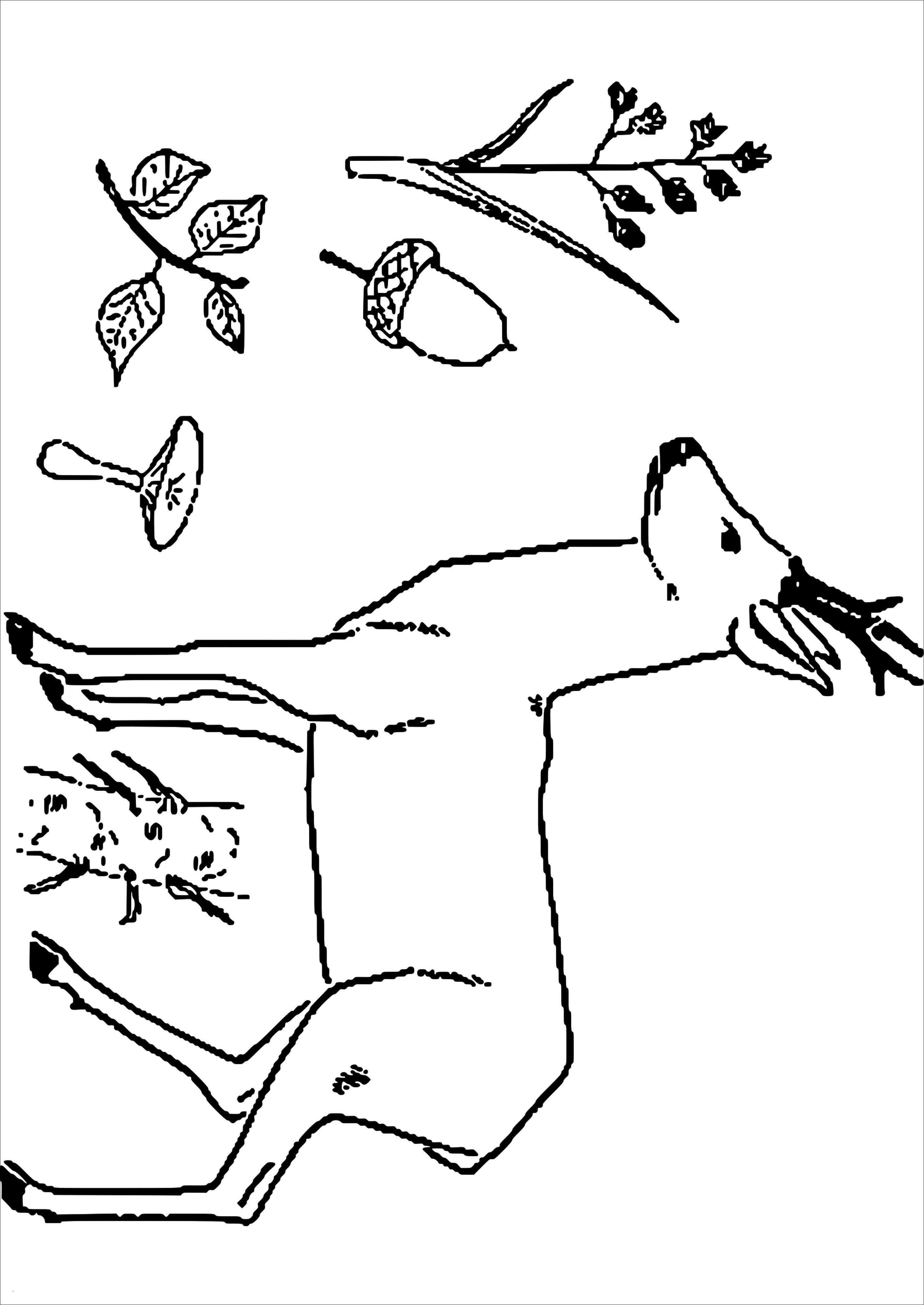 Reh Bilder Zum Ausmalen Genial Hirsche Zum Ausmalen Bildnis Ausmalbild Hirsch Und Hund Genial Bilder
