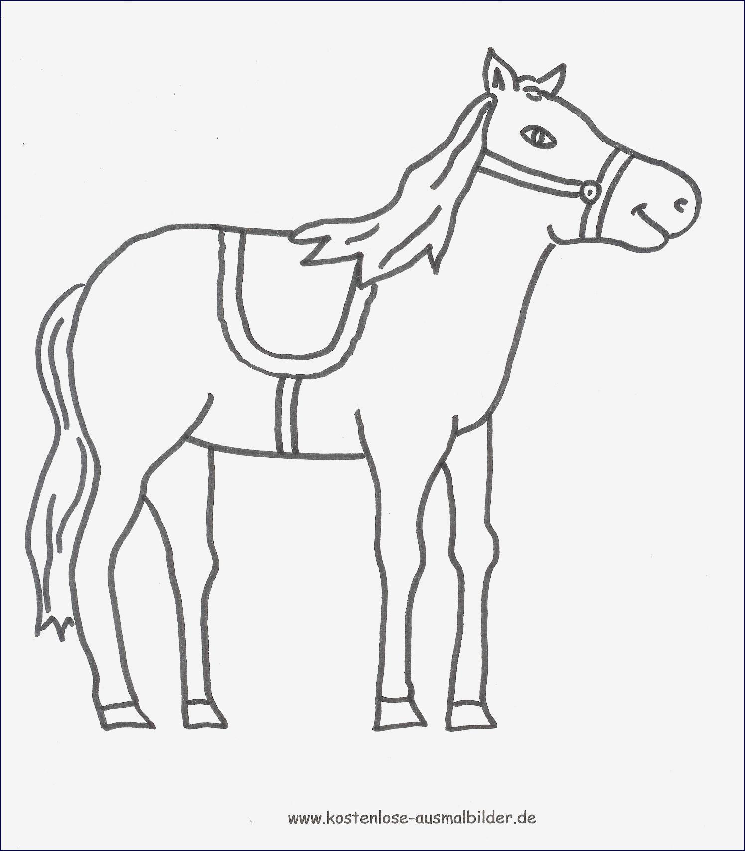 Reh Bilder Zum Ausmalen Neu Ausmalbilder Pferde Zum Ausdrucken Bildergalerie & Bilder Zum Bild