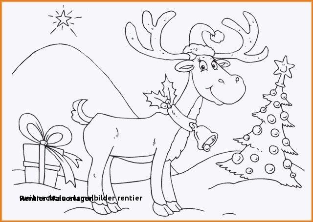 Rentier Zum Ausmalen Inspirierend Weihnachten Ausmalbilder Rentier Ausmalbilder Weihnachten Schneemann Stock