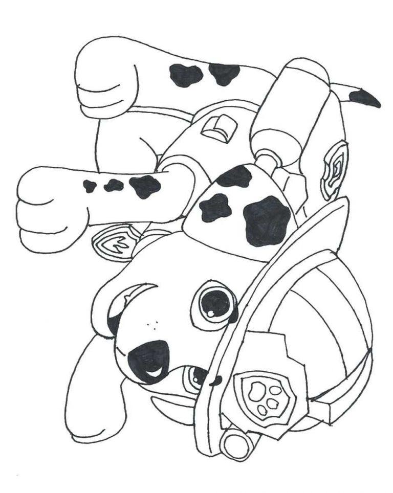 rescue bots ausmalbilder inspirierend paw patrol coloring