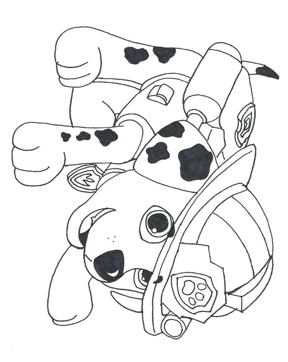 Rescue Bots Ausmalbilder Genial Marshall Paw Patrol Coloring Page Unique Free Paw Patrol Coloring Sammlung
