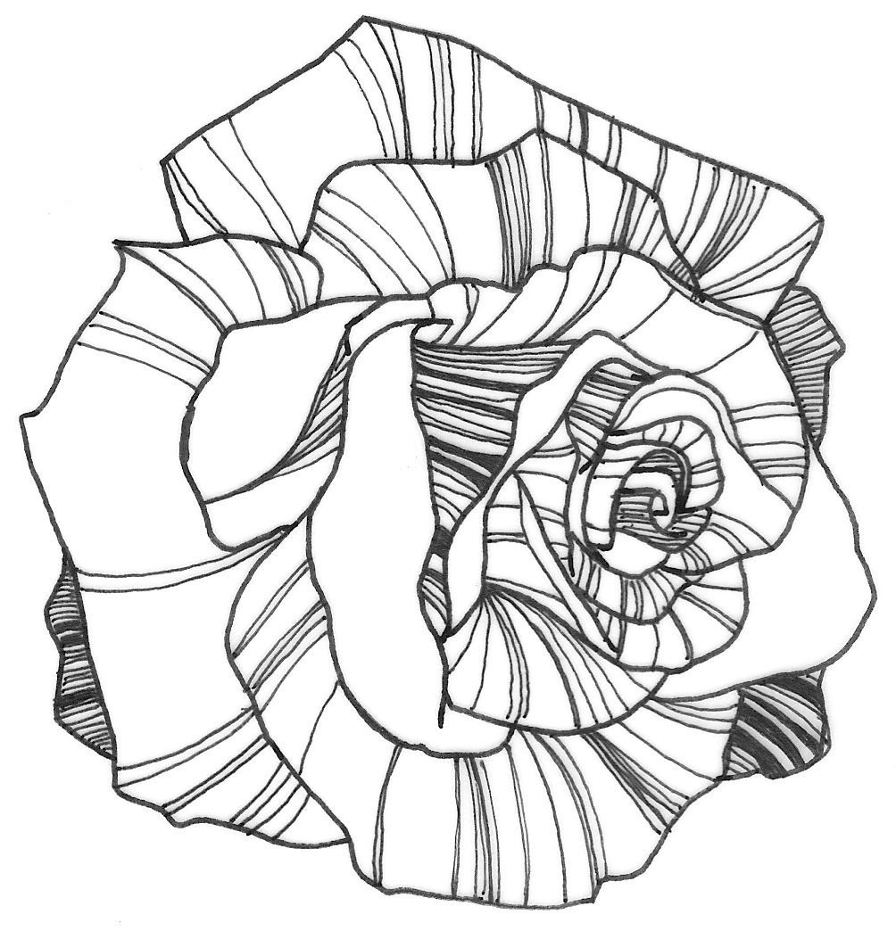 Rosen Bilder Zum Ausmalen Frisch Nicole Illustration Flower Power Rose Coloring Page Colouring Neu Stock