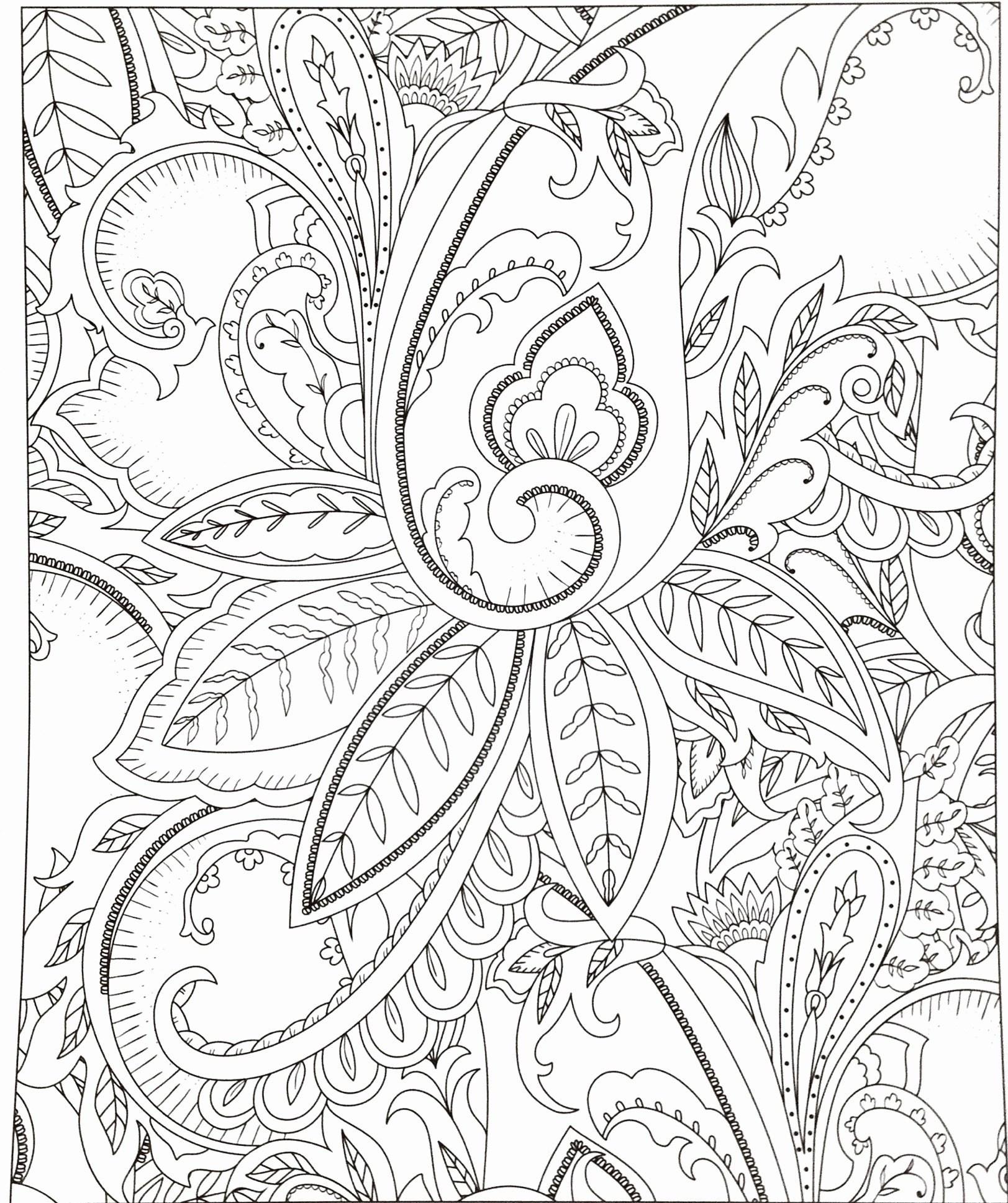 Rosen Bilder Zum Ausmalen Genial Blumenbilder Zum Zeichnen Wunderschöne 35 Blumen Ausmalbilder Galerie