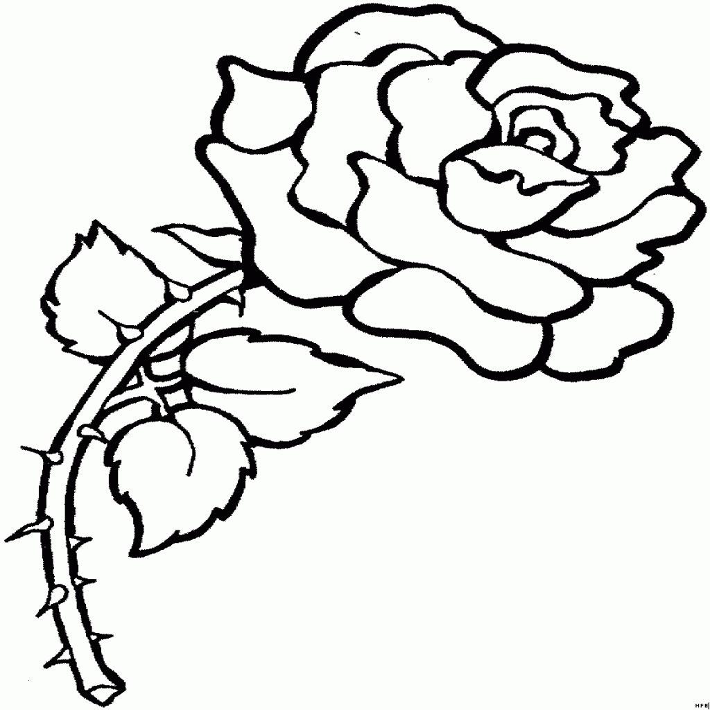 Rosen Bilder Zum Ausmalen Neu Malvorlage Quelle Inspirierend Malvorlagen Blumen Rosen Schön Galerie
