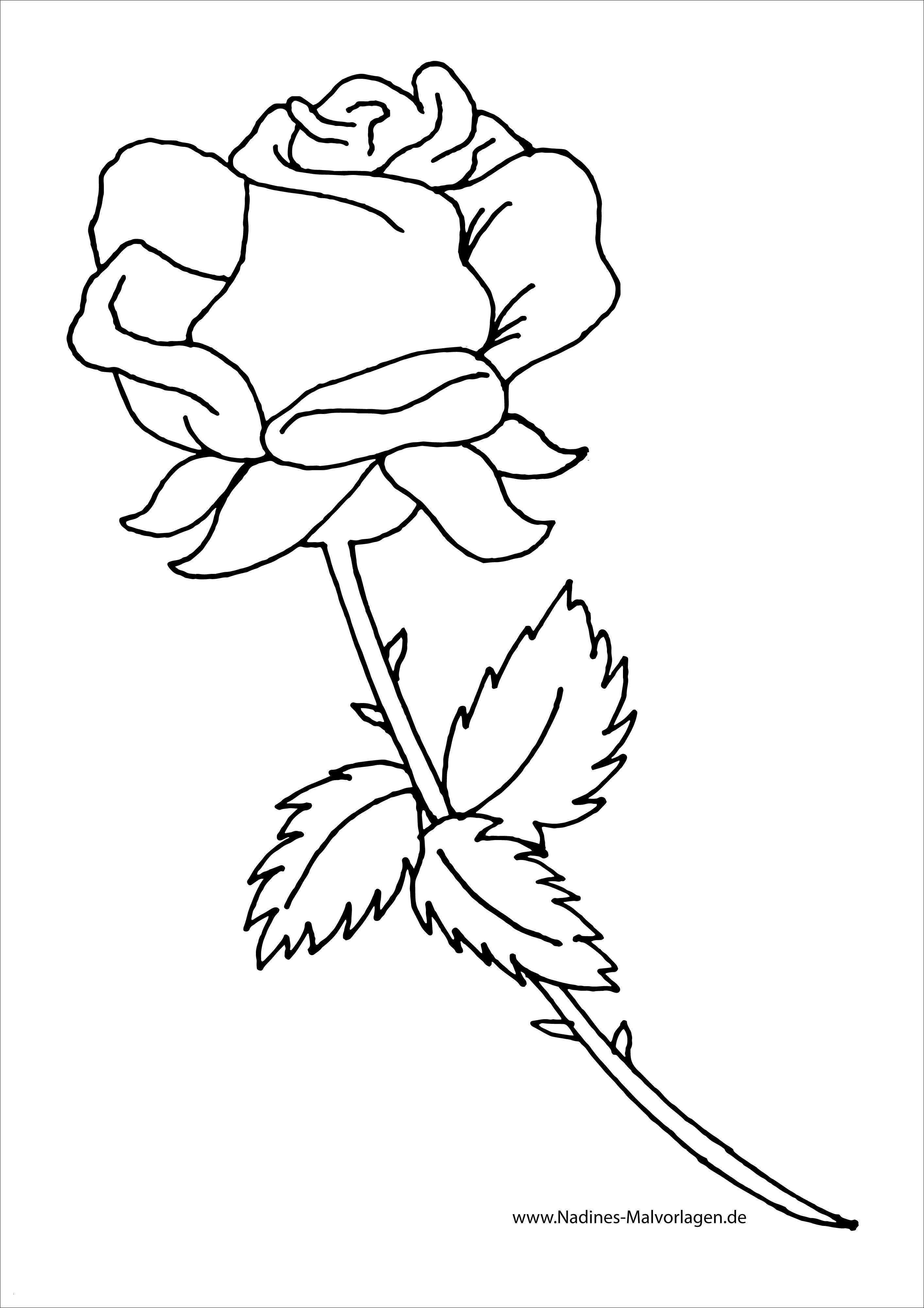 Rosen Zum Ausmalen Frisch Rose Herz Malvorlage Bild Rosen Mit Herzen Ausmalbilder Schön Neues Galerie