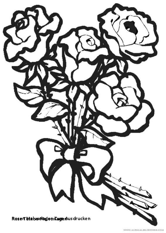 Rosen Zum Ausmalen Frisch Rosen Malvorlagen Zum Ausdrucken Ausmalbilder Blumen Perfect Color Galerie