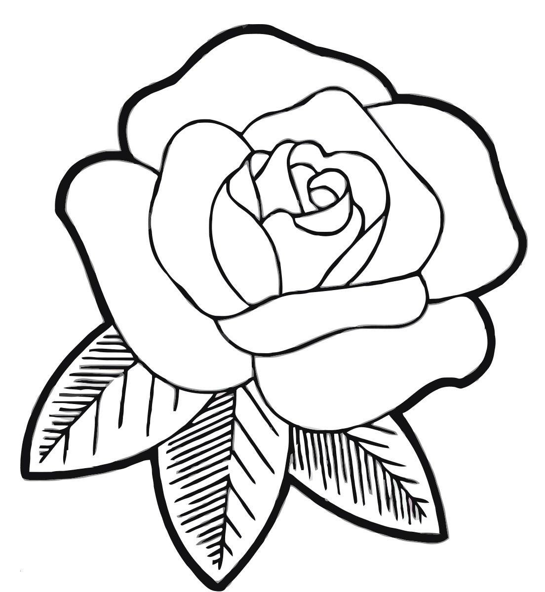 Rosen Zum Ausmalen Inspirierend Rose Ausmalbilder Einzigartig 32 Malvorlagen Blumen Rosen Galerie