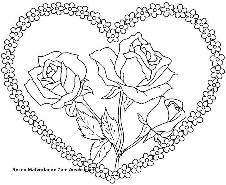 Rosen Zum Ausmalen Neu Ausmalbilder Blumen Rosen Malvorlagen Zum Ausdrucken Ausmalbilder Stock